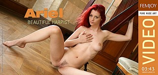 Beautiful Harpist