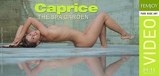 The Spa Garden
