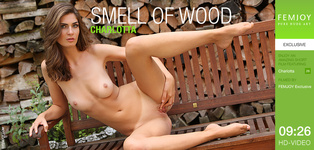 Smell Of Wood