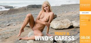 Wind's Caress